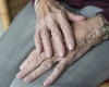 a senior woman's hands
